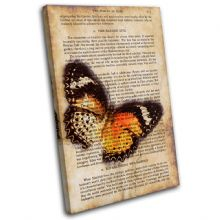 Butterfly Vintage Collage Animals - 13-6061(00B)-SG32-PO